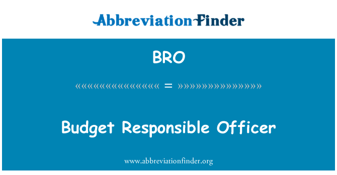 BRO: Budget Responsible Officer
