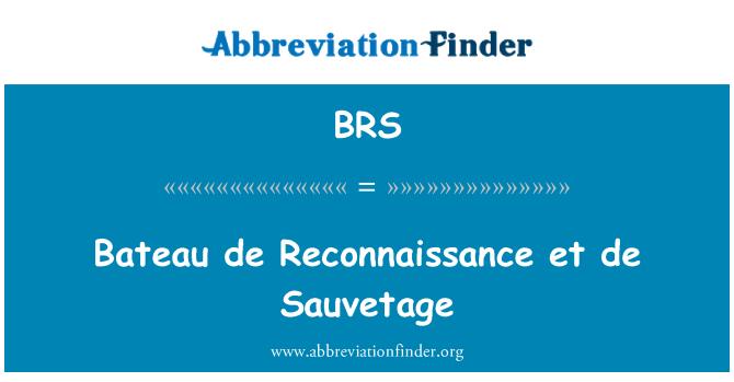 BRS: Bateau de Reconnaissance et de Sauvetage