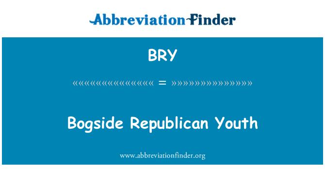 BRY: Bogside Republican Youth
