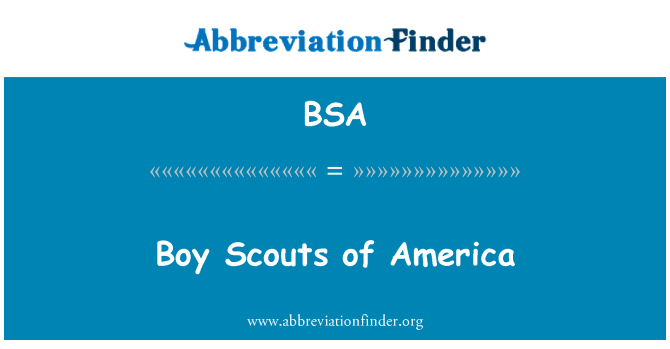 BSA: Boy Scouts of America