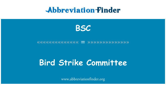 BSC: Bird Strike Committee