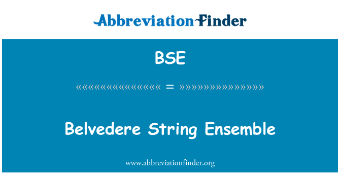 BSE: Belvedere String Ensemble