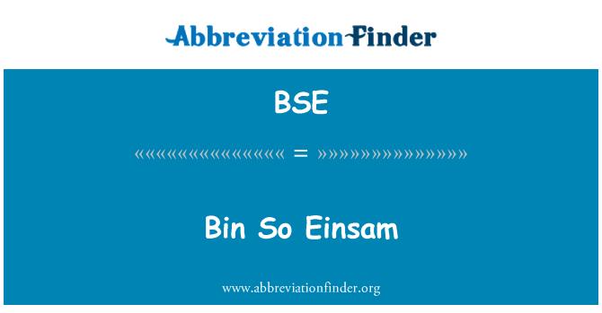 BSE: Bin So Einsam