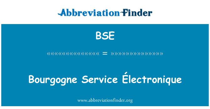 BSE: Bourgogne Service Électronique