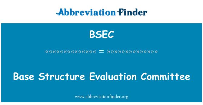 BSEC: Temel yapısını Değerlendirme Komitesi