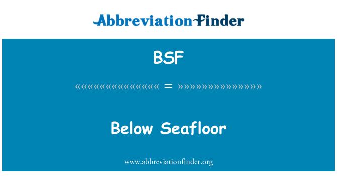 BSF: Below Seafloor