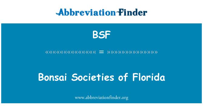 BSF: Bonsai Societies of Florida