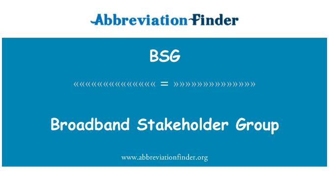 BSG: Broadband Stakeholder Group