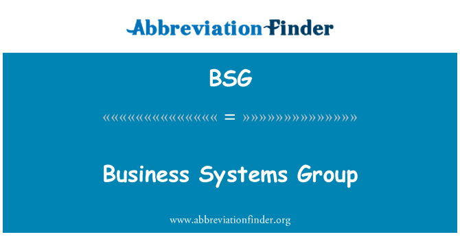 BSG: Business Systems Group