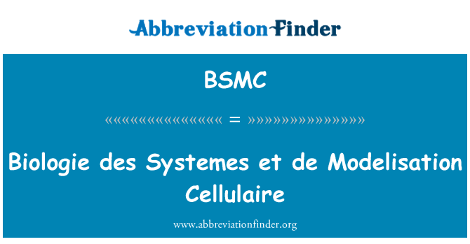 BSMC: Biologie des Systemes et de modelización Cellulaire