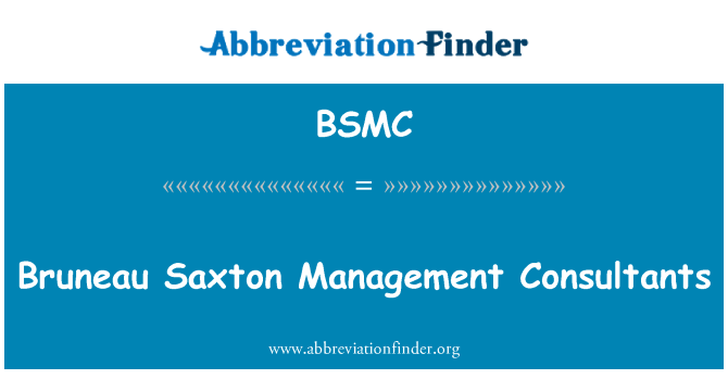 BSMC: Bruneau Saxton Management Consultants