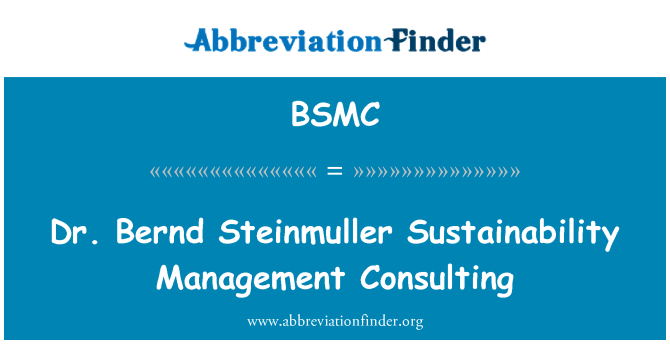 BSMC: Dr. Bernd Steinmuller Sustainability Management Consulting