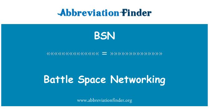 BSN: Battle Space Networking