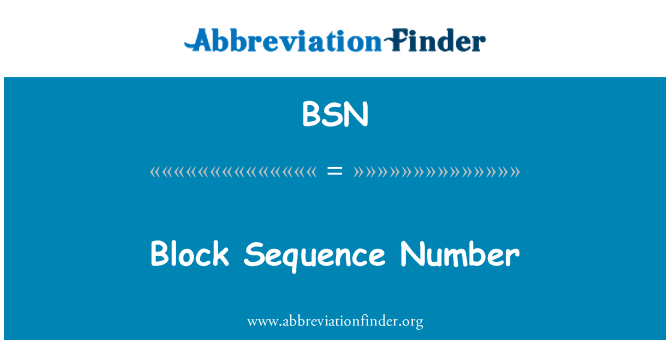 BSN: Block Sequence Number