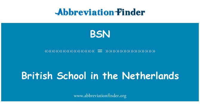 BSN: British School in the Netherlands