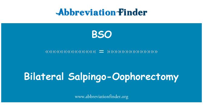 BSO: Bilateral Salpingo-Oophorectomy
