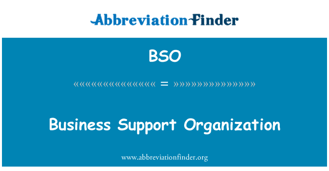 BSO: Business Support Organization