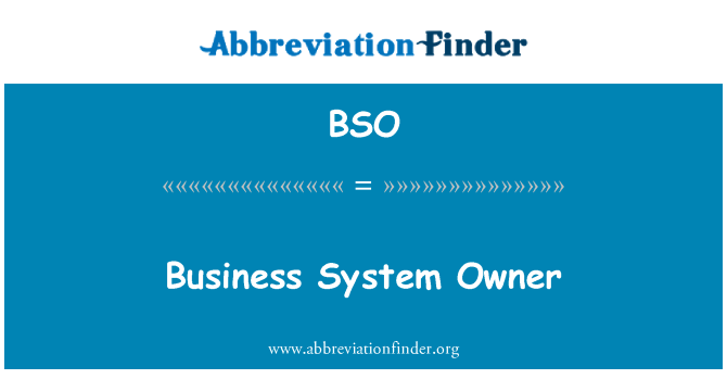 BSO: Business System Owner