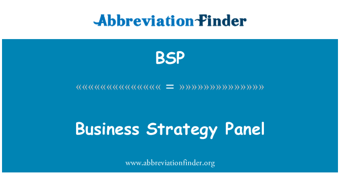 BSP: Business Strategy Panel