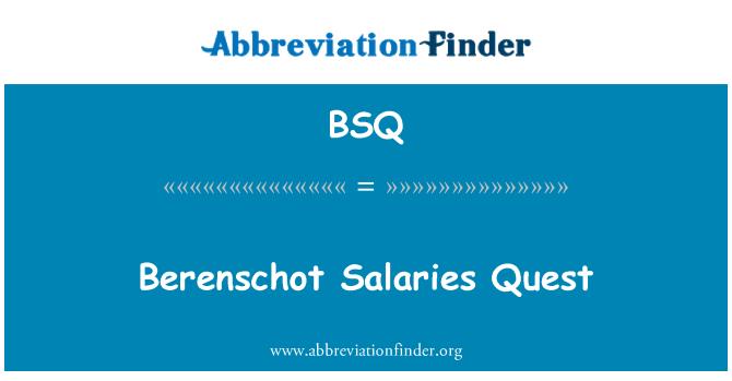 BSQ: Berenschot Salaries Quest