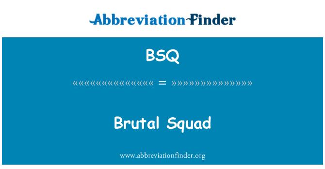 BSQ: Brutal Squad