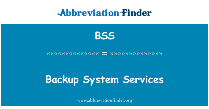 BSS: Backup System Services