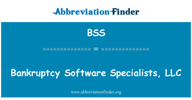 BSS: Bankruptcy Software Specialists, LLC