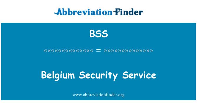 BSS: Belgium Security Service