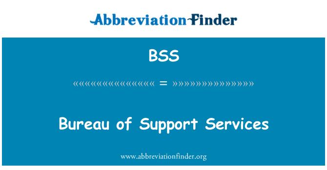 BSS: Bureau of Support Services