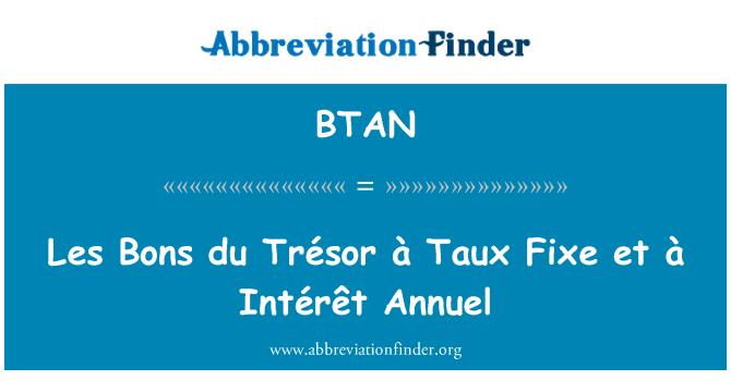 BTAN: Les Bons du Trésor à Taux Fixe et à Intérêt Annuel