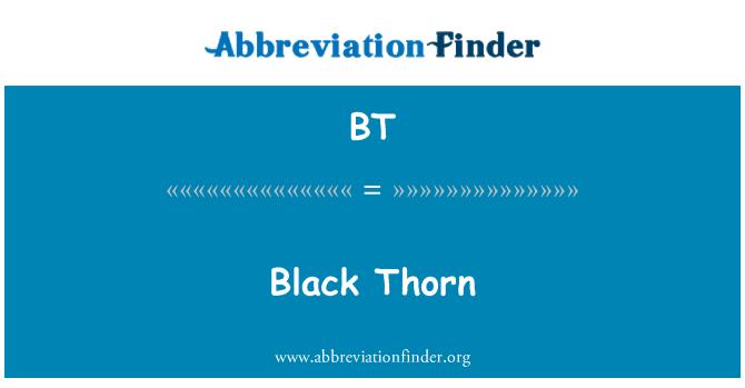 BT: Black Thorn