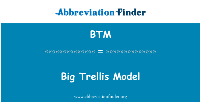 BTM: Big Trellis Model