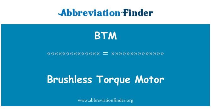 BTM: Brushless Torque Motor