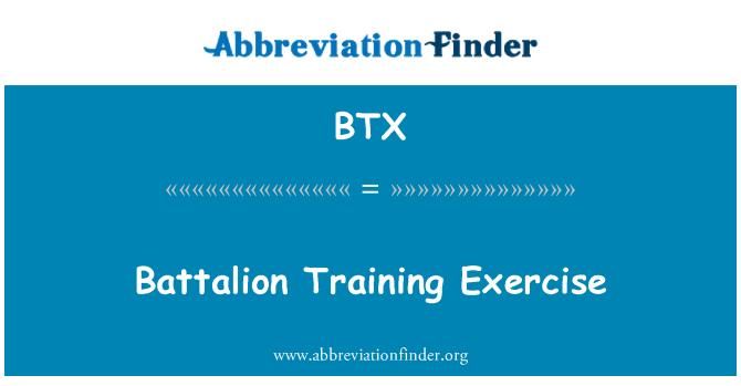 BTX: Battalion Training Exercise
