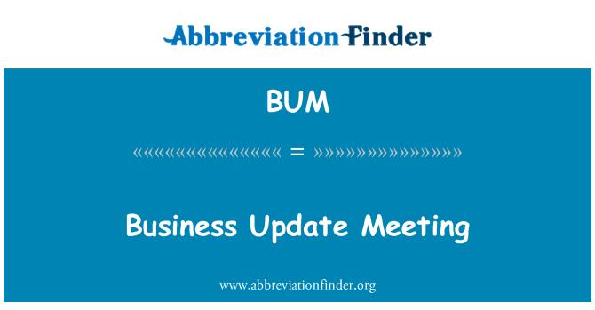 BUM: Business Update Meeting