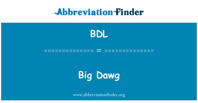 BDL: Puasa itu revolusi hati besar