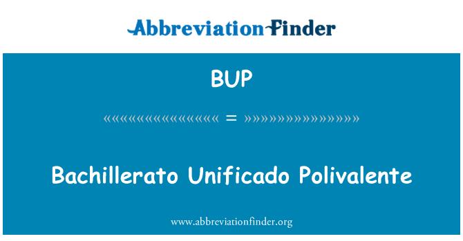 BUP: Bachillerato Unificado Polivalente