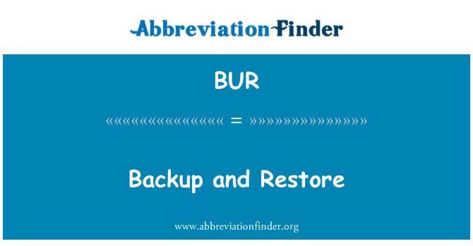 BUR: Backup and Restore