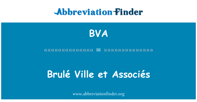 BVA: Brulé Ville et Associés