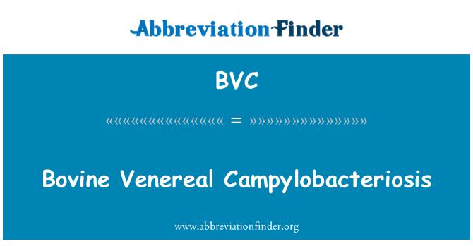 BVC: Bovine Venereal Campylobacteriosis