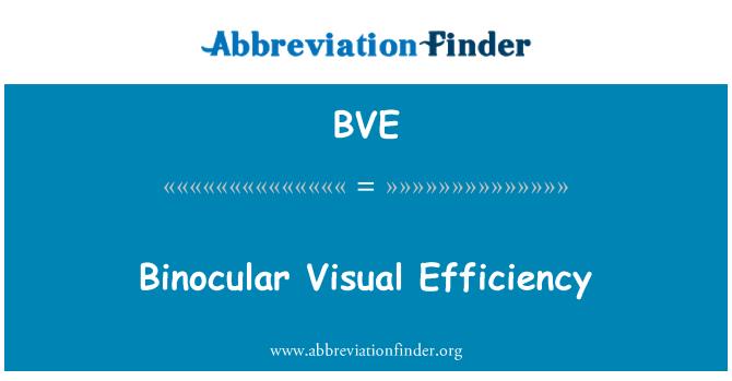 BVE: Binocular Visual Efficiency
