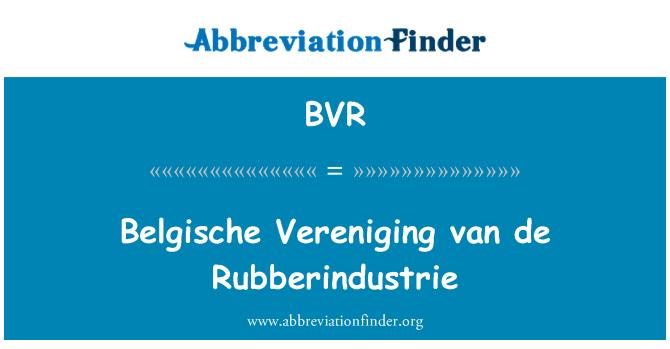 BVR: Belgische Vereniging van de Rubberindustrie