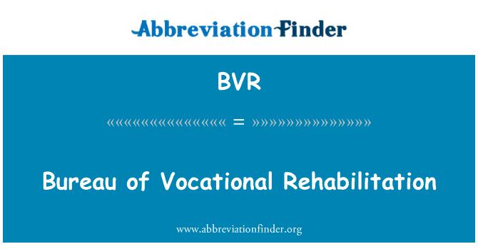 BVR: Bureau of Vocational Rehabilitation