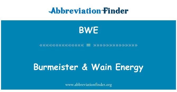 BWE: Burmeister & Wain Energy