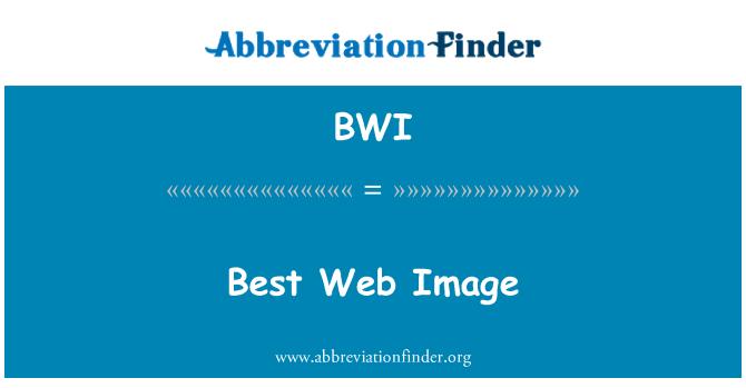 BWI: Best Web Image