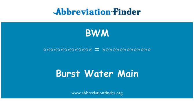 BWM: Burst Water Main