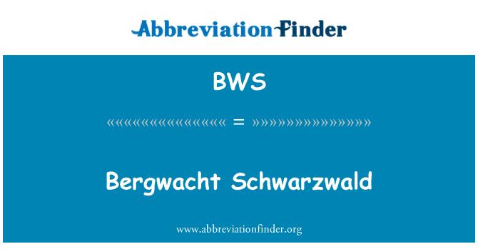 BWS: Bergwacht Schwarzwald