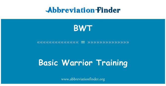 BWT: Basic Warrior Training