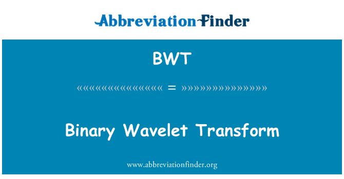 BWT: Binary Wavelet Transform