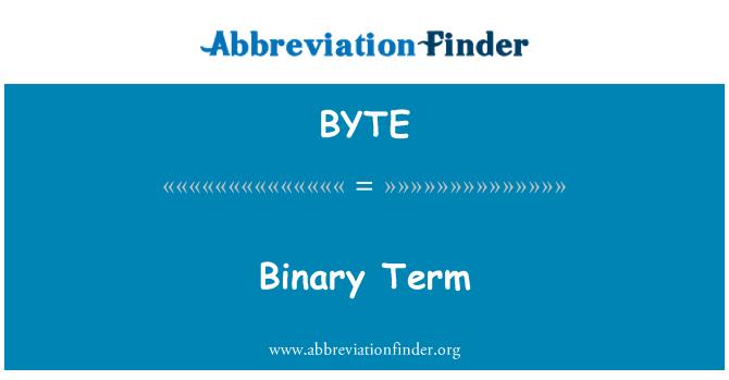 BYTE: Término binario